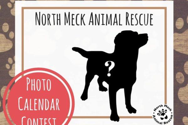 Photo-Calendar-Contest